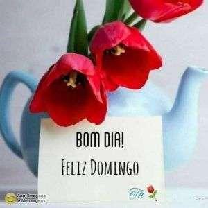 Bom dia e feliz domingo